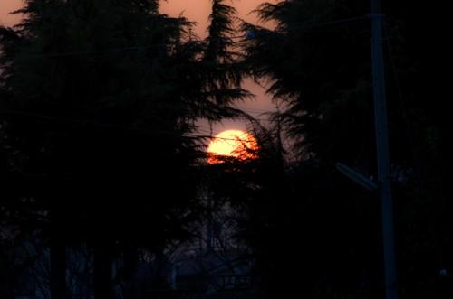 でっかい夕日が覗いていたので